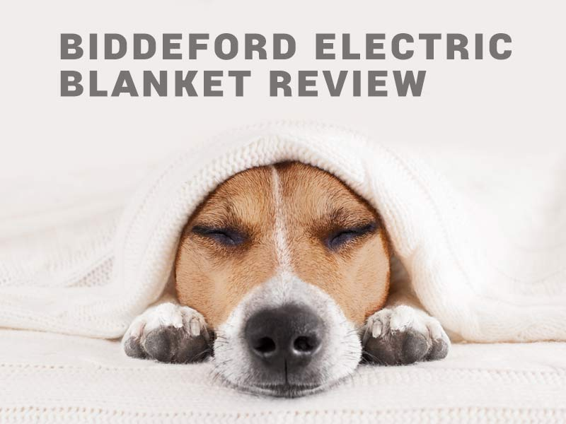 Biddeford Electric Blanket Review Stay Warm With A Biddeford Blanket