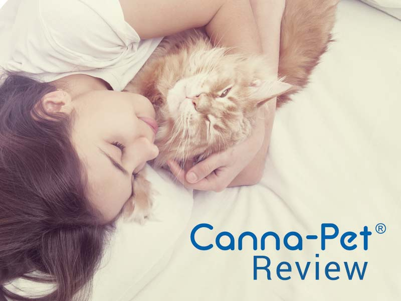 Our Canna Pet Review examines this CBD nutritional supplement