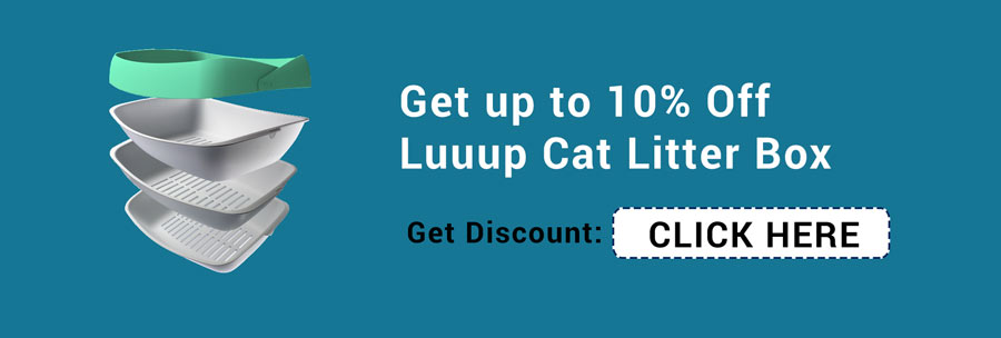 Luuup coupon code