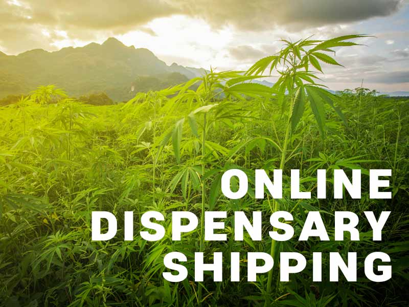 Online Dispensary Shipping in California | Your Marijuana Delivered.