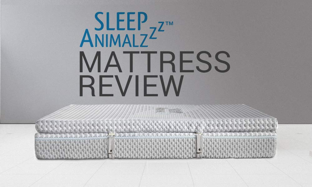 Read our Sleep Animal Mattress Review