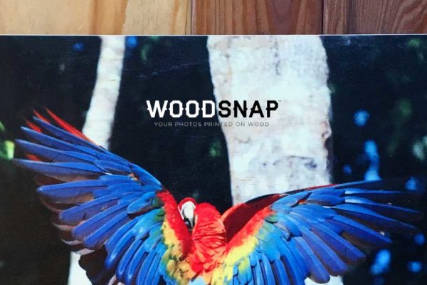 Woodsnap Review | Printing On Wood Because Paper Is So Yesterday