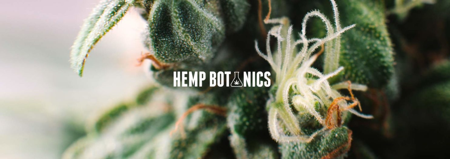 Read our Hemp Botanics Review and buy CBD safely in the UK