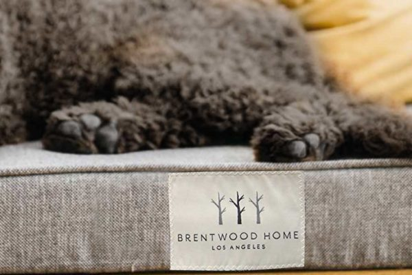 Brentwood Home Griffith Dog Bed Review