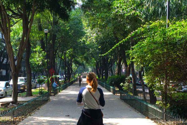 La Condesa Is Mexico Cities Ultimate Hidden Gem