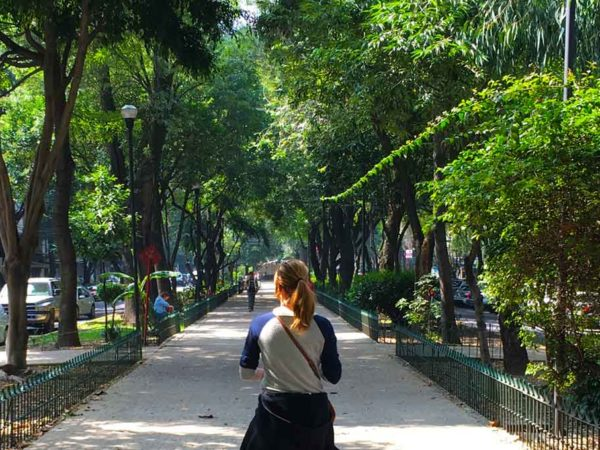 La Condesa Is Mexico Cities Ultimate Hidden Gem
